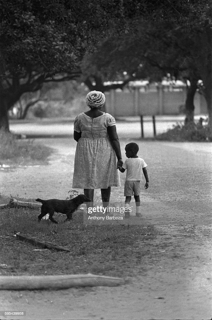 As they walk along the side of road a young boy holds a woman's hand and glances over his shoulder at a small dog behind them Warrington Florida 1966