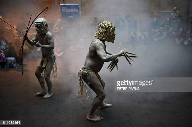 TOPSHOT Asaro Mud Men from the Asaro Valley in Papua New Guinea's eastern highlands perform for the first time outside their home their rituals for...