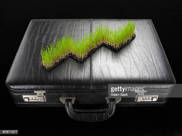 Ascending grass graph on briefcase