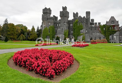 Ashford castle : Stock Photo