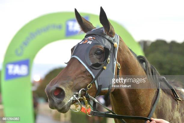 Ashleigh Rae after winning Victorian Statewide Conveyancing Maiden Plate at Cranbourne Racecourse on March 31 2017 in Cranbourne Australia