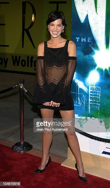 Ashley Scott during The WB Network's 2002 Summer Party at Renaissance Hollywood Hotel in Hollywood California United States