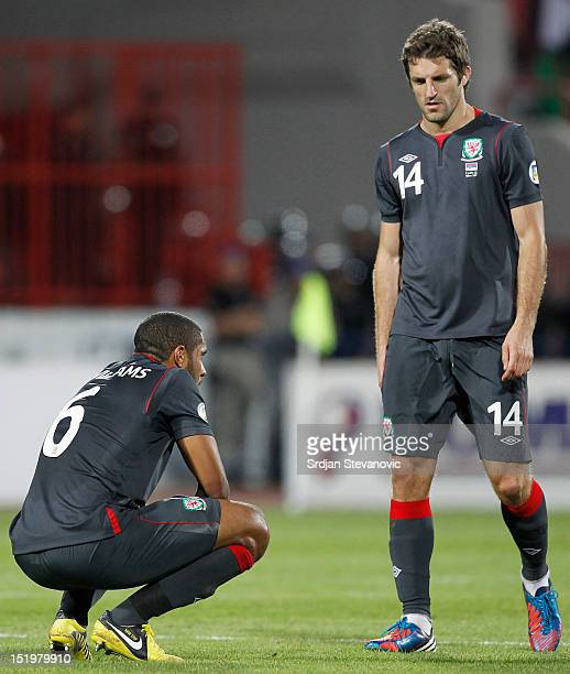 Ashley Williams and Sam Ricketts of Wales look dejected after the FIFA 2014 World Cup Qualifier at stadium Karadjordje Park between Serbia and Wales...