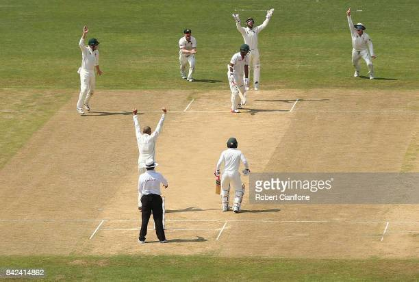 Ashton Agar of Australia celebrates after taking the wicket of Shakib Al Hasan of Bangladesh during day one of the Second Test match between...