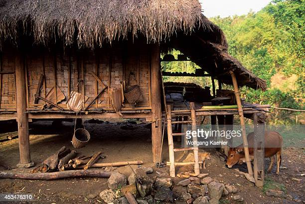 Asia No Vietnam Near Hoa Binh Giang Mo Village Muong Hilltribe Traditional House On Stilts