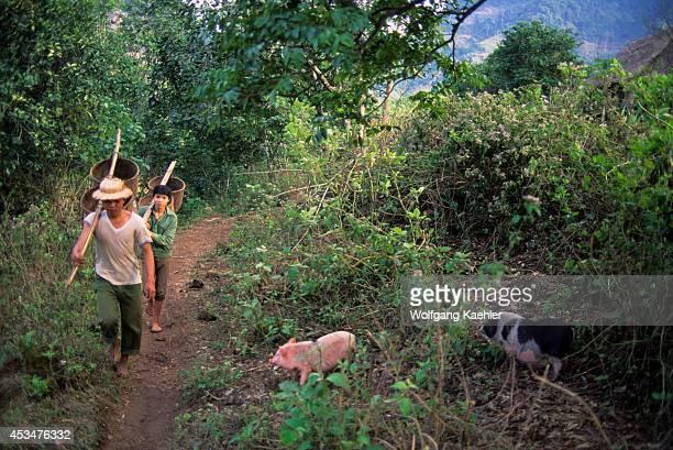Asia No Vietnam Near Hoa Binh Giang Mo Village Muong Hilltribe Village Scene