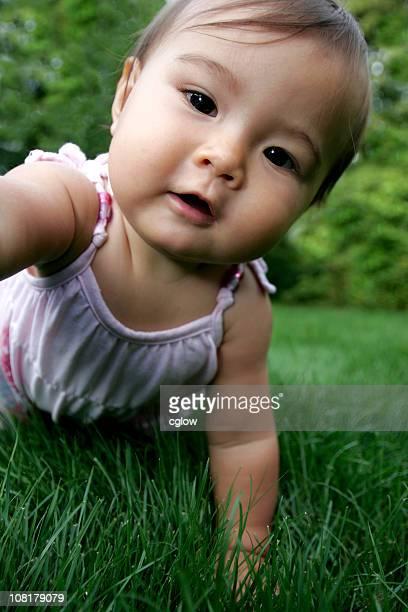 Asian Baby Girl Crawling in Grass