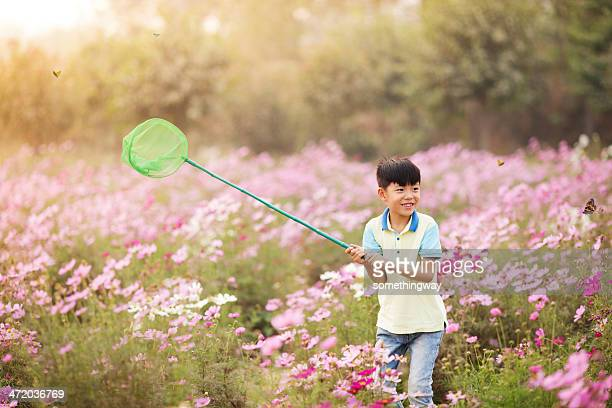 Asian boy caught a butterfly in the garden