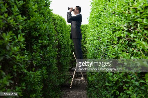 Asian businessman peering over hedge with binoculars