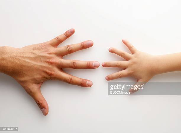 Asian child's hand and adult man's hand
