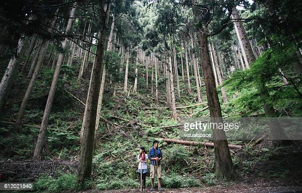 Asian Couple Outdoors amongst Tall Trees