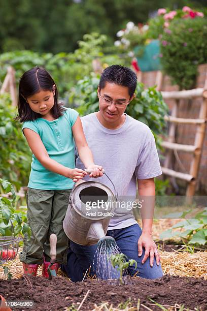 Asian father and daughter watering plants