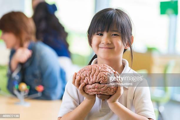 Asian girl in private elementary school holding brain science model