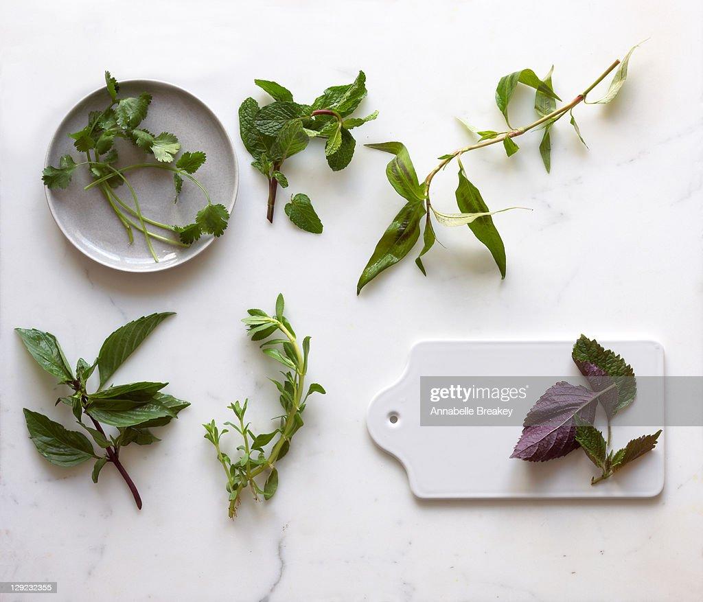 Asian Herb Still Life