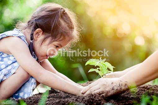 Asian little girl and parent planting young tree on black soil together : Stock Photo