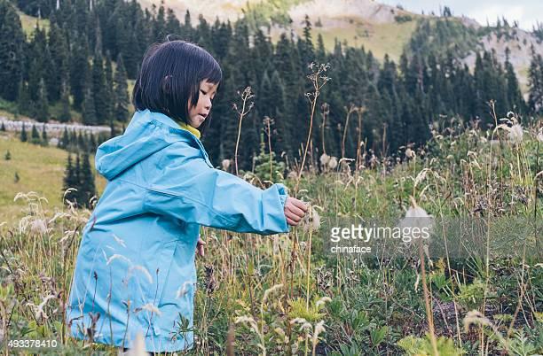 asian little girl hiking at MT.Rainier