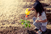Asian little girl watering young tree with watering pot in vintage color tone