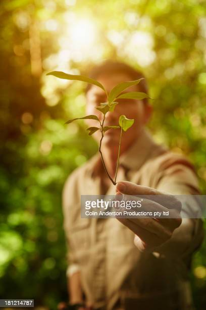 Asian man holding plant in jungle