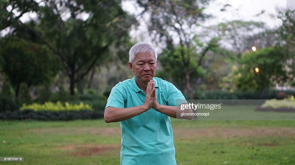 Asian Senior Elderly Practice Taichi, Qi Gong exercise outdoor : Foto de stock