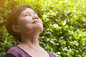 Happiness Asian senior woman relaxing and breathing fresh air in park with sunlight. copy space. Plants Natural background.