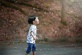 Asian toddler boy chasing soap bubble.