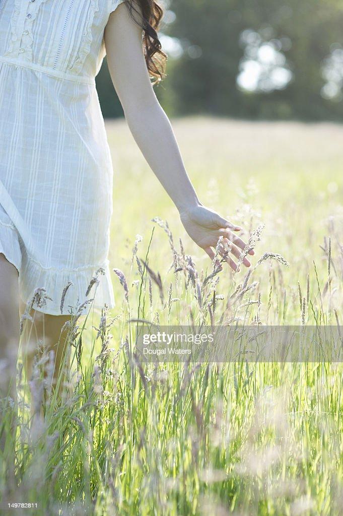 Asian woman brushing hand through grasses. : Stock Photo