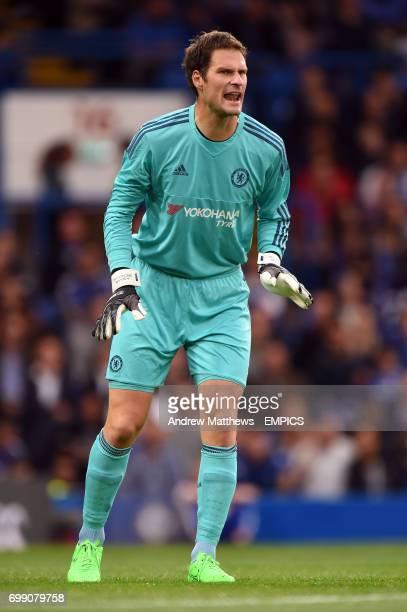 Asmir Begovic Chelsea