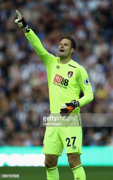 Asmir Begovic of Bournemouth shouts instructions during the Premier League match between West Bromwich Albion and AFC Bournemouth at The Hawthorns on...