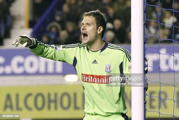 Asmir Begovic Stoke City goalkeeper