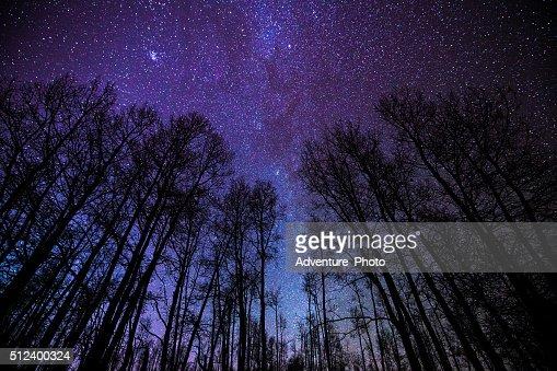 絢爛で銀河系の夜の風景