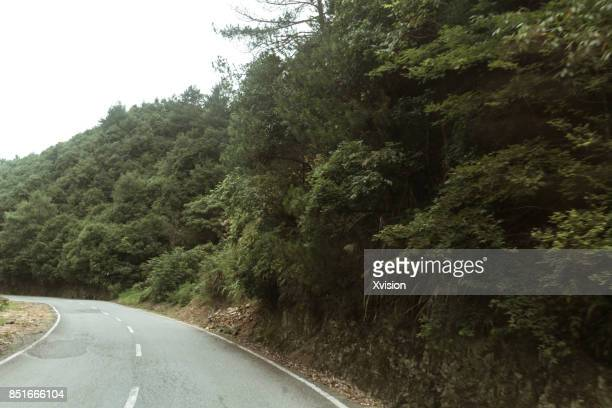 Asphalt mountain road under blue sky with clouds in motion blur with plants in sides
