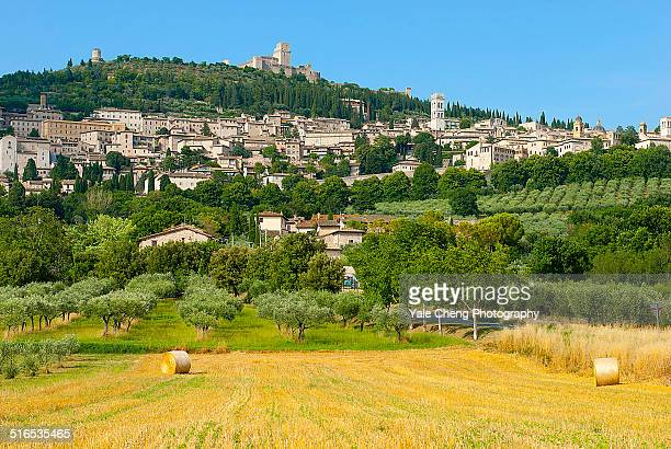 Assisi from a distance