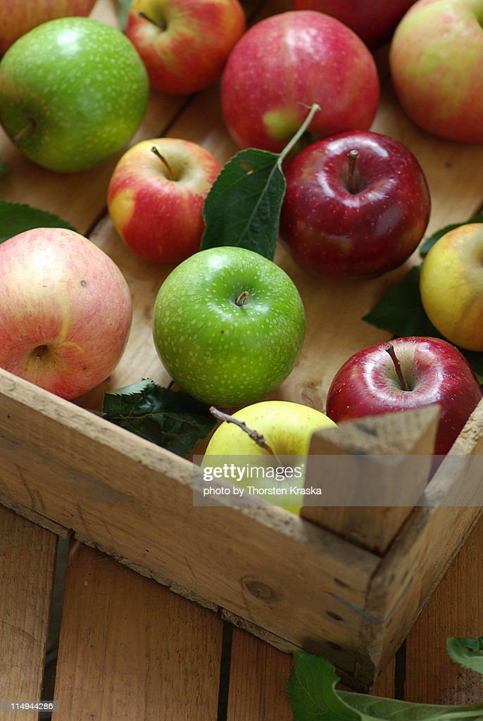 Assorted apples : Stock Photo
