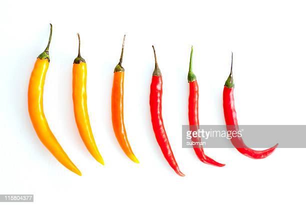 VariadosStencils chillies em branco