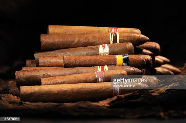 Assorted Cuban Cigars
