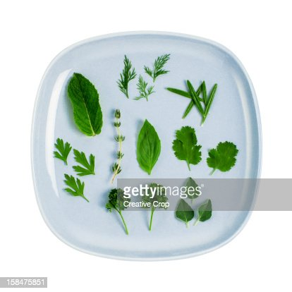 Assorted fresh herb leaves on blue plate