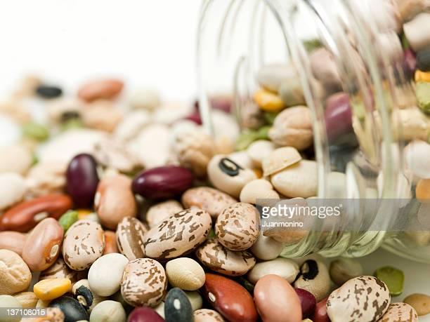Verschiedene Bio-Bohnen