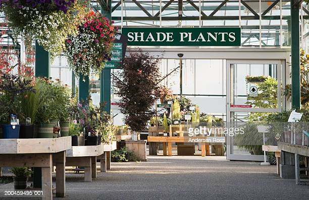 Assorted potted plants beneath 'Shade Plants' sign in nursery