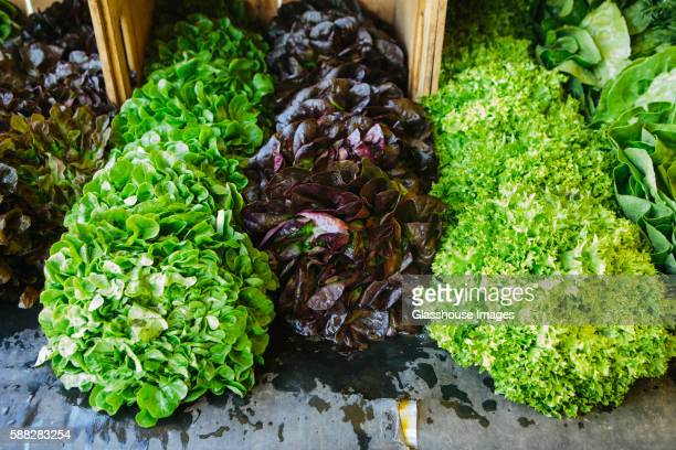 Assortment of Lettuce at Market