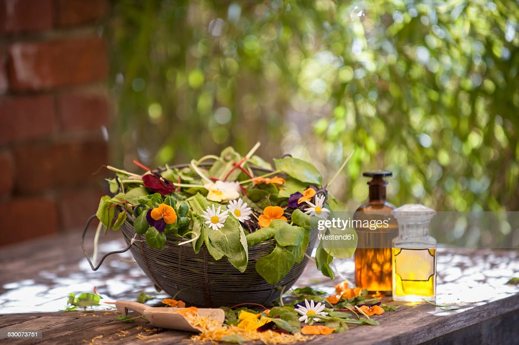 Assortment of medicinal herbs