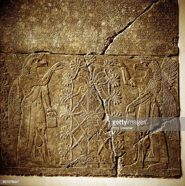 Assyrian relief of a Sacred tree flanked by two winged genies In the collection at the Pergamon Museum in Berlin
