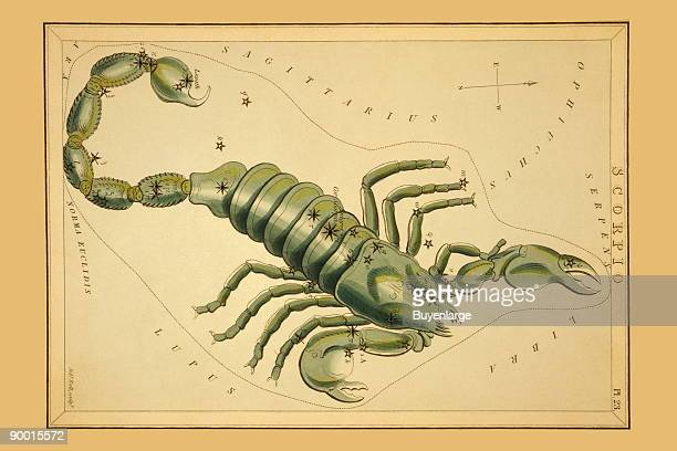 Astronomical chart showing a scorpion forming the constellation