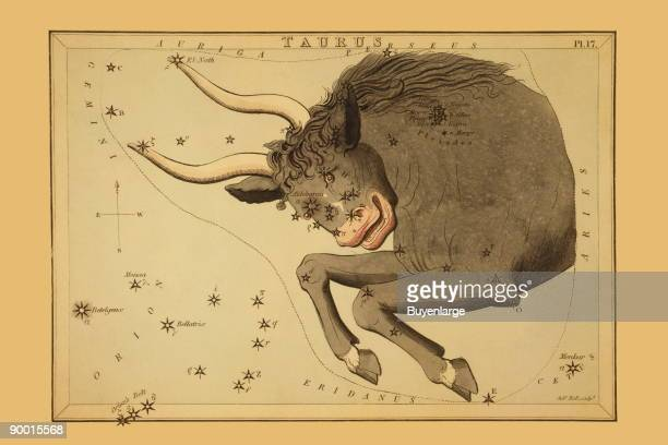Astronomical chart showing the bull Taurus forming the constellation also shows the Pleiades