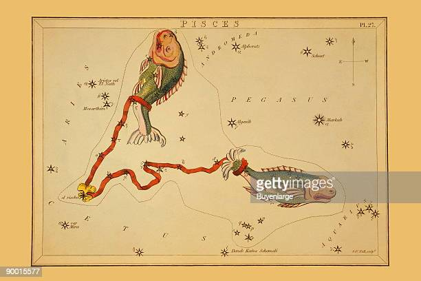Astronomical chart showing two fish tethered with a ribbon forming the constellation