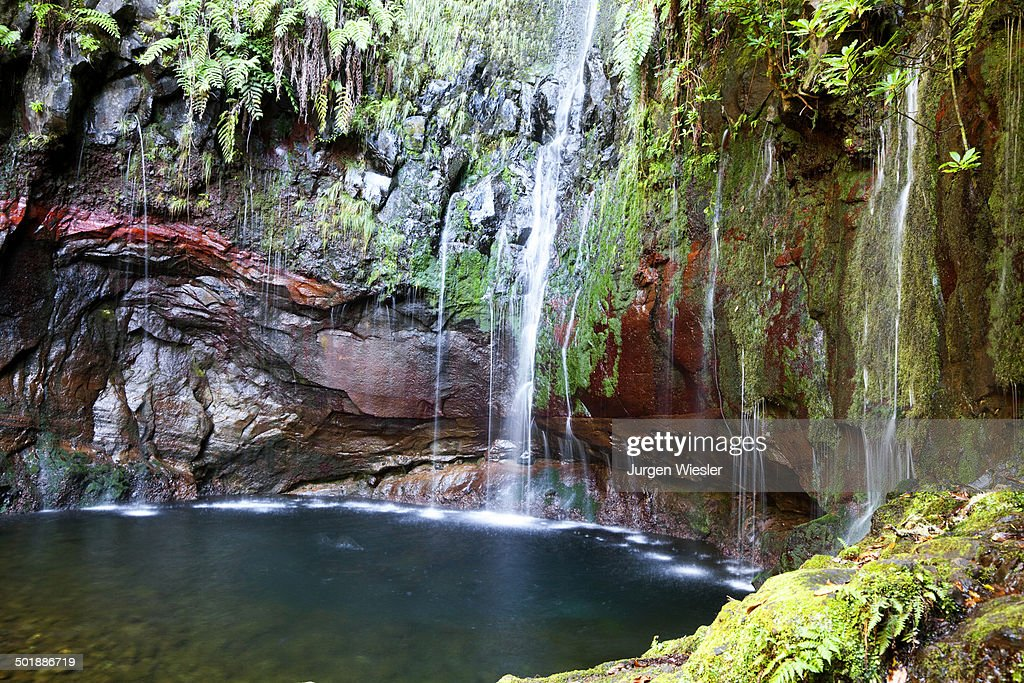 Rabacal / Meda Portugal  City pictures : At 25 Sources Rabacal Madeira Portugal Photo | Getty Images