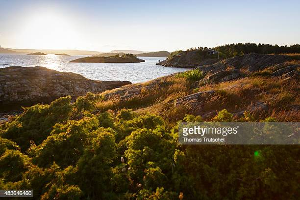 At the coast and the sea at a fjord at Kristiansand in Norway on July 06 2015