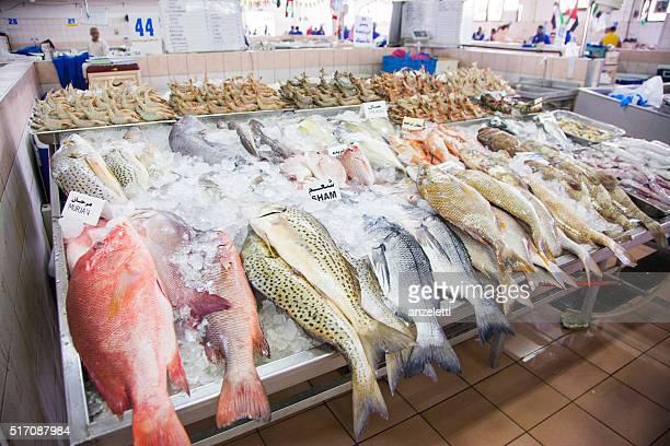 Al mercato del pesce di Abu Dhabi