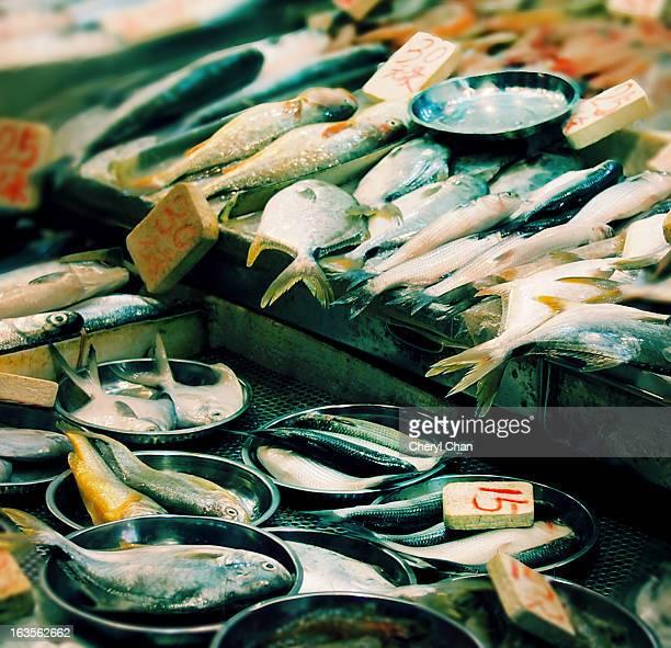 At the fish monger