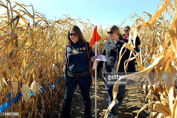 At the Marini Farm corn maze Margaux Pierce left from Milford NH walks with her friend Amy Bilodeau from Eliot Maine through the maze
