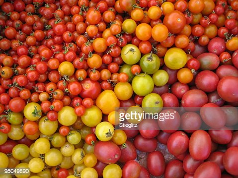 at the market: colorful tomatoes